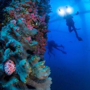 rigs-2-reef-explorers-blue-lattitudes-portsmouth-new-hampshire-blog-seacoast-lately.jpg15.jpg