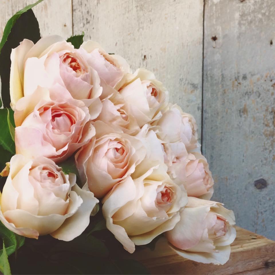 flower-kiosk-shop-portsmouth-new-hampshire-blog-seacoast-lately-weddings.jpg15.jpg