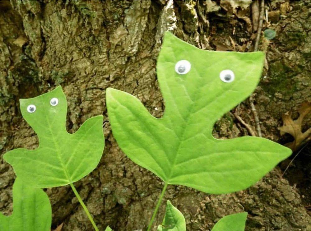 googley-eye-guy-portsmouth-new-hampshire-nh-blog-kittery-maine-new-england-blogger-seacoast-lately.jpg4.jpg