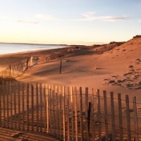 things-to-do-plum-island-massachusetts-travel-guide.jpg