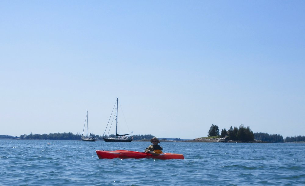 Expert kayaker spotted in Port Clyde Harbor