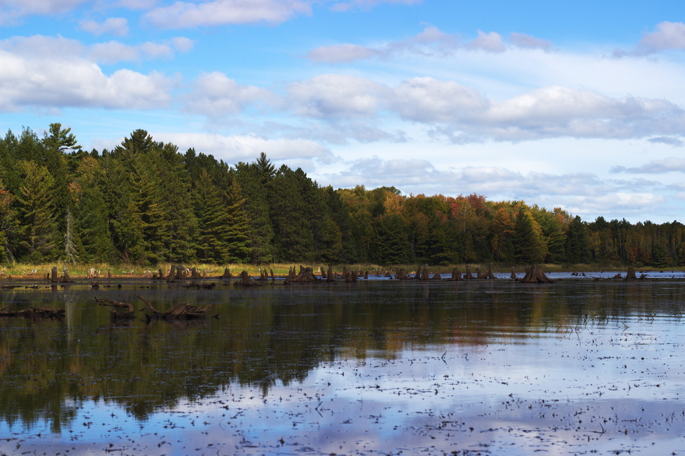 We made our way to the Turtle Flambeau Flowage and began the exploration.