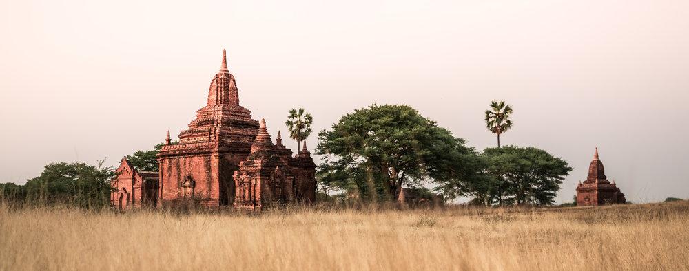 Bagan Myanmar Sunset Grass Temples 1