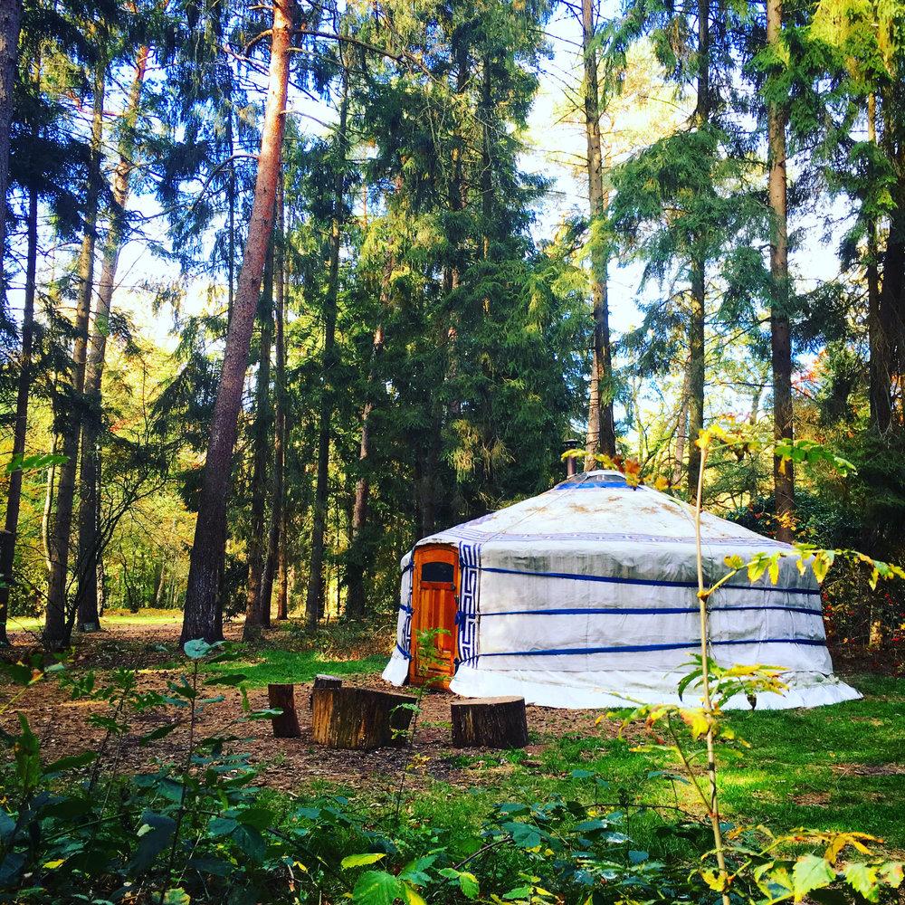 yurt1.jpg