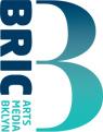 bric_logo2008.jpg
