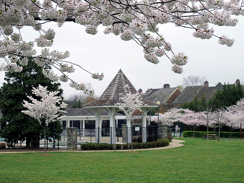 Gaithersburg_Maryland.Kentlands_Recreation_Center.Kentlands_TND.Robert_Orr_&_Associates.New_Urbanism.Garden_Gazebo.jpg