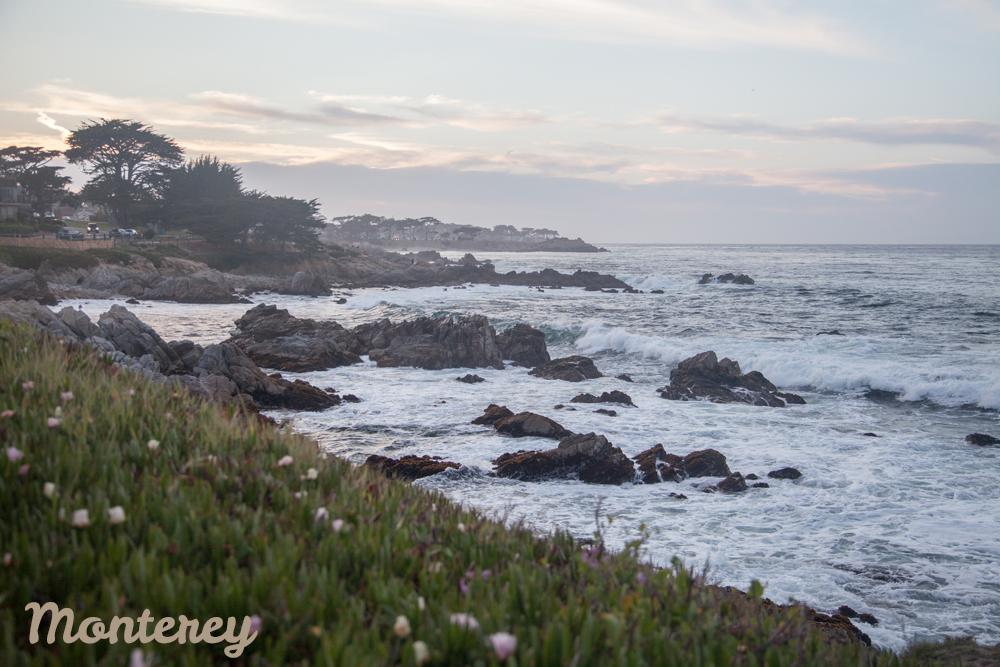 1_Monterey-X1.jpg