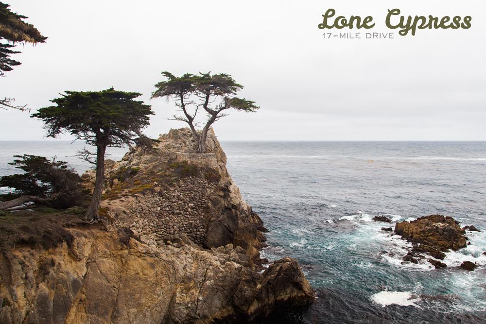 1_Monterey-X4.png