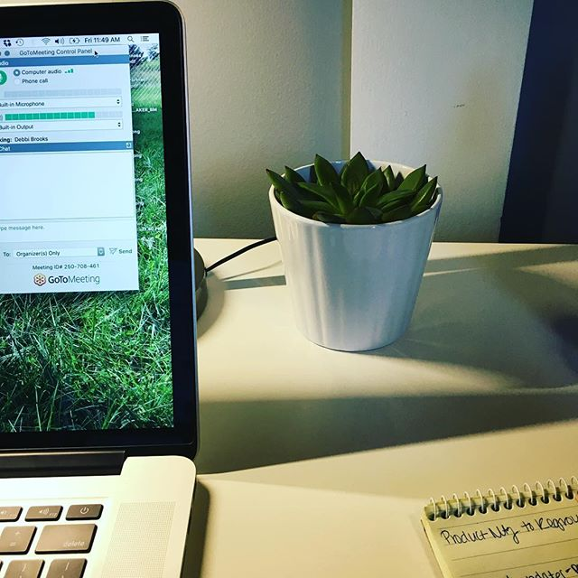 Working at our standing desks today and admiring our teeny bits of nature. So helpful when it is cold and gray outdoors! #habitsareyourdestiny #pivotalhabits #habits #employeeperformance #workdesign #standingdesk
