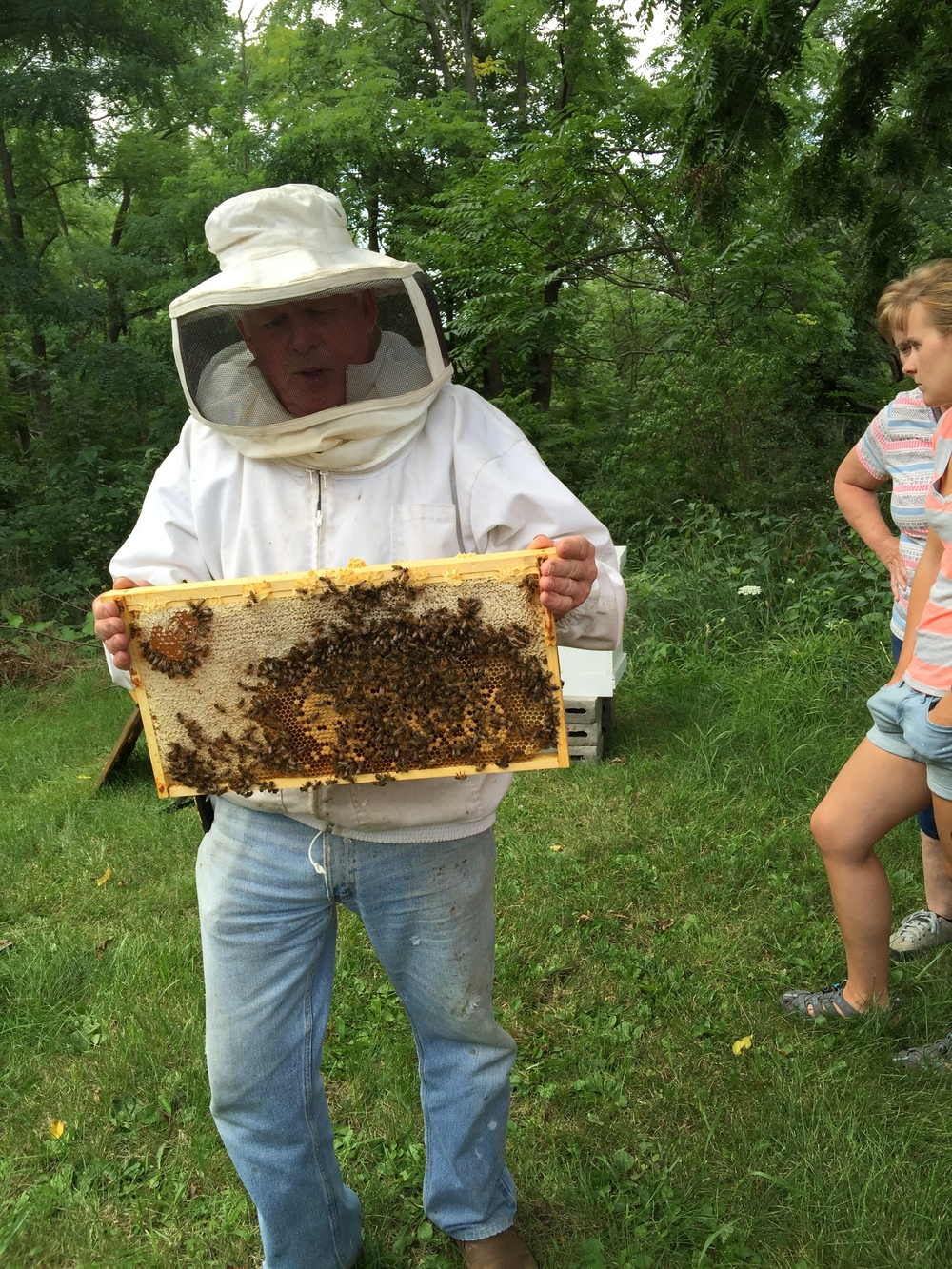 Masterful Bee Keeper Rodney Dow with a slice of the hive