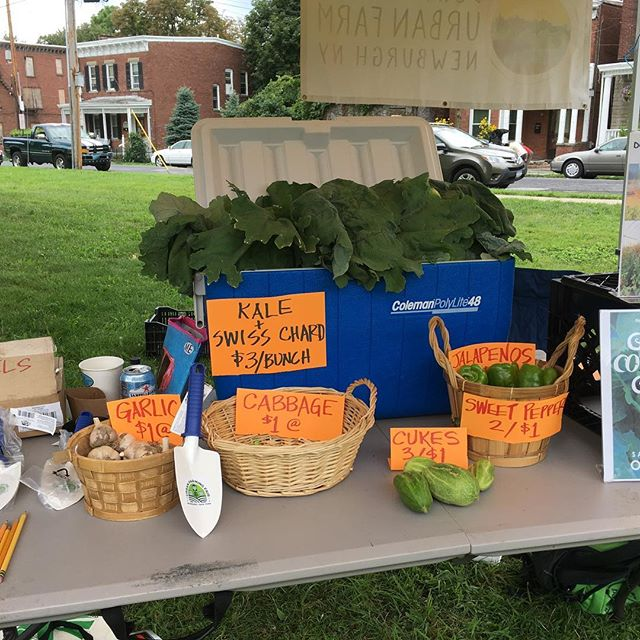 Downing Park Farmers' Market #growninnewburgh
