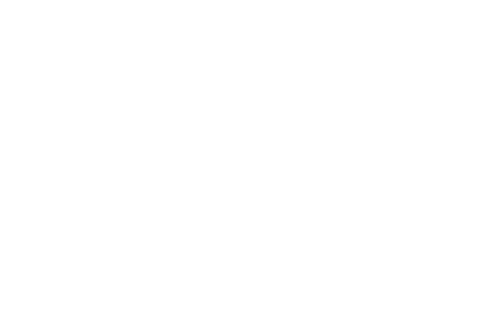 NominatedBestSpecialEffects-PAIndieShortsFilmFestival-2018 white.png