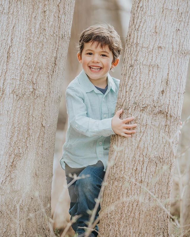 "Mom warned, ""He might be a tough one"". I said, ""Ohh, my favorite kind!"" 💙  #appleofoureye #childphotographer #familyphotography #letsgoexplore #boys #boymoms #springsessions #springminis #springminisessions #metrodetroitphotographer #southeastmichiganphotographer"