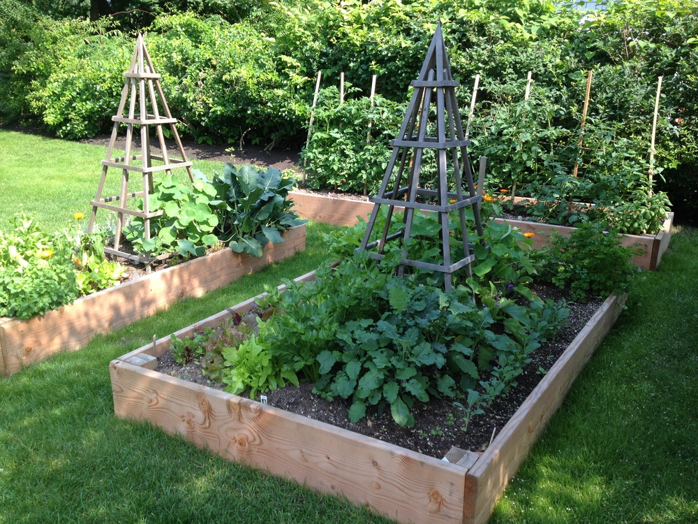 THE MAINE POTAGER