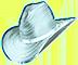 Binions_HudHat_Silver_01.png
