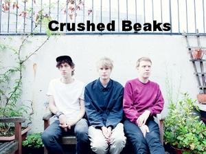 Crushed+Beaks.jpeg