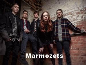 Marmozets (1).jpeg