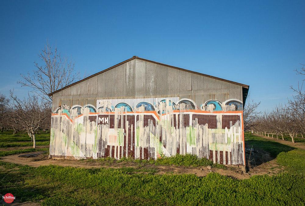 Graffiti-Shed-II.jpg
