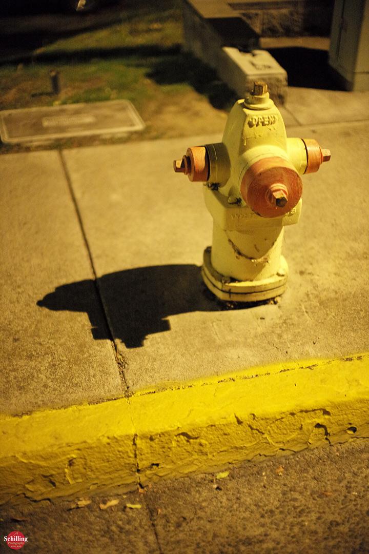 Nighttime-Hydrant.jpg