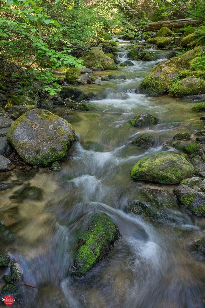 E Fork Ashland Creek