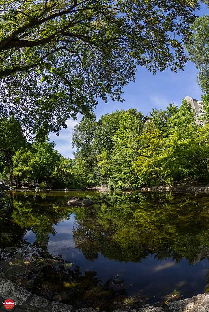 Lithia Park; Last Day Of Spring
