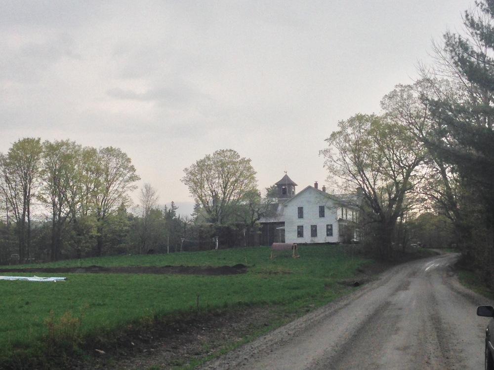 black dirt farm
