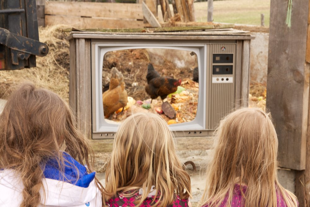 farm tv copy.jpg