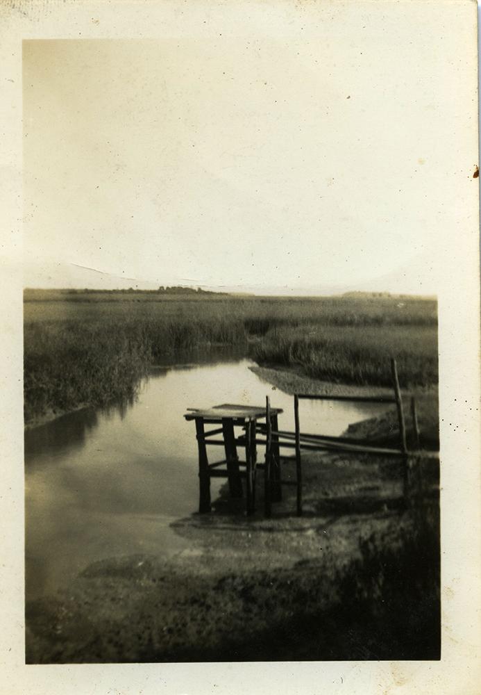 1949_swimminghole&platform_lowRes.jpg