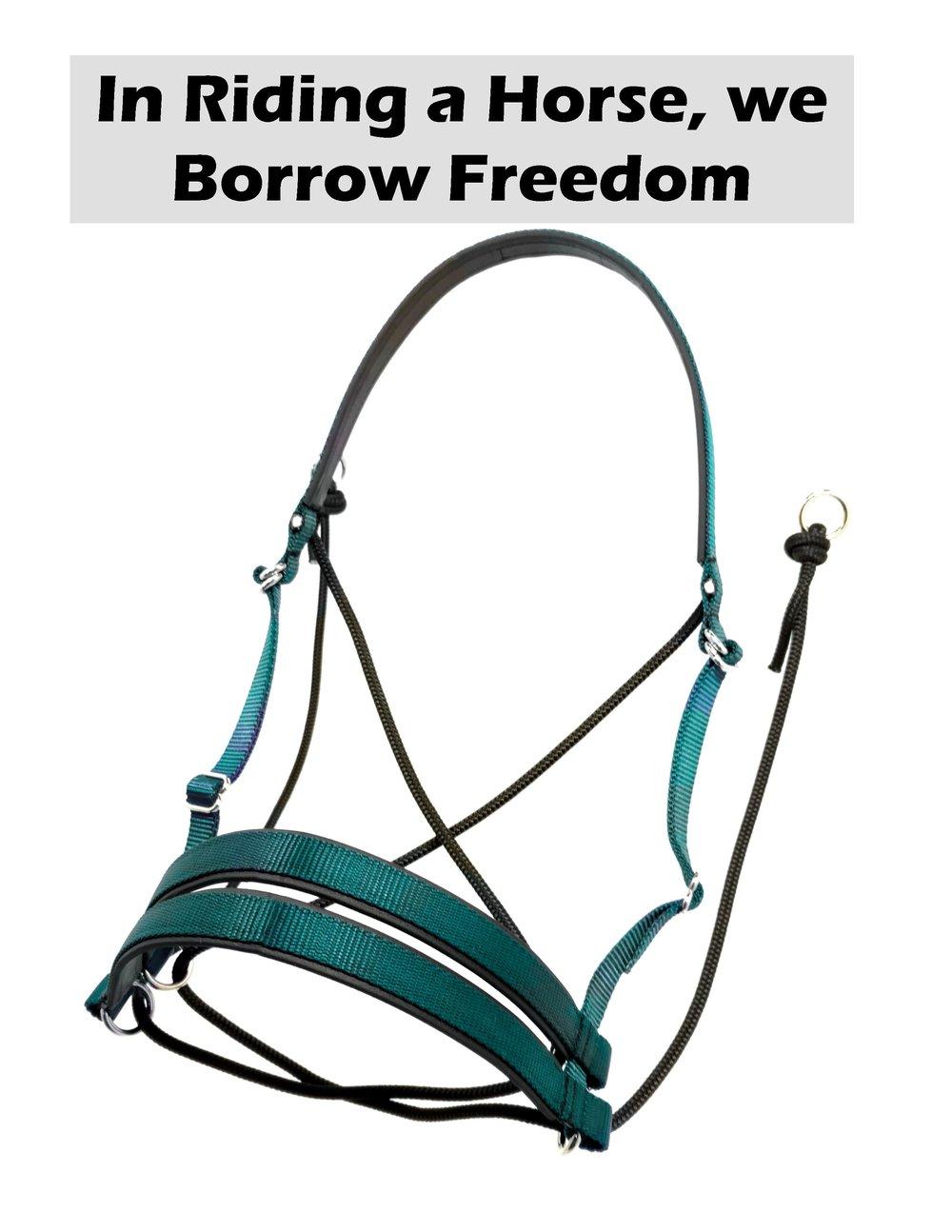 0 Borrow.jpg