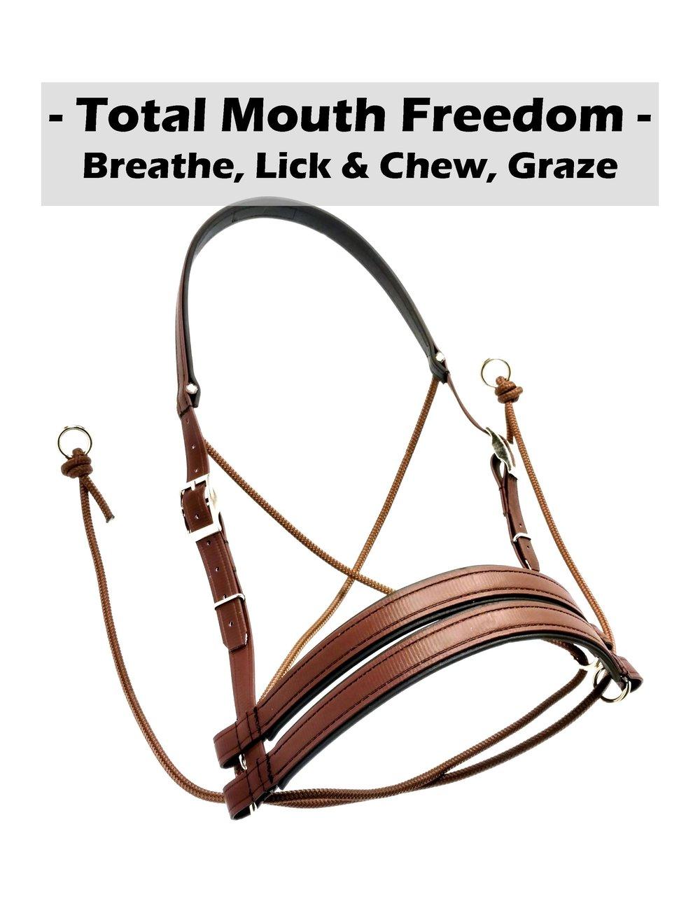 Mouth Freedom.jpg
