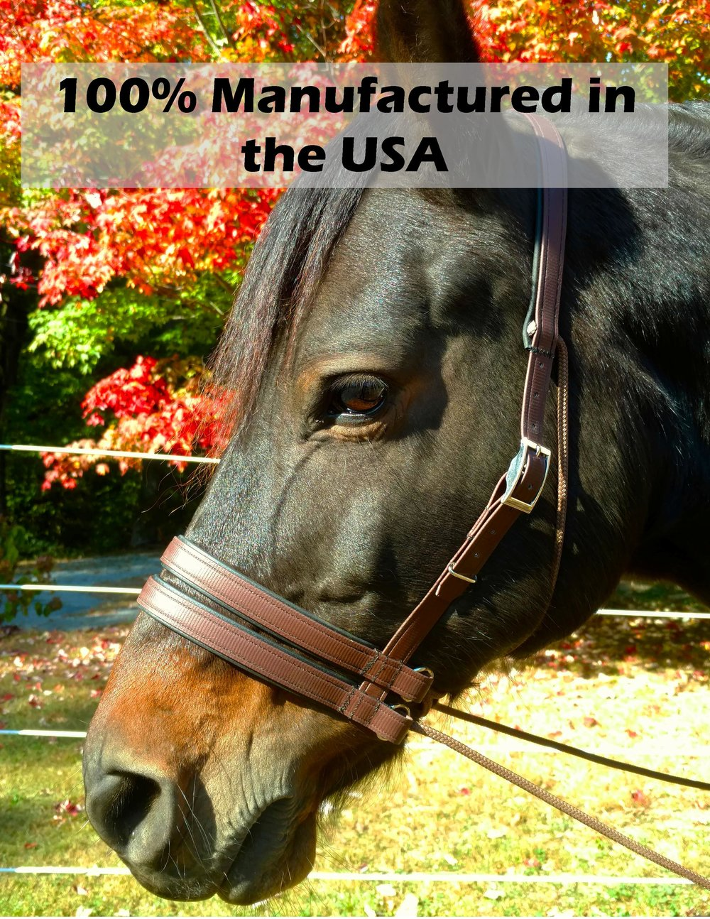 Manufactured USA.jpg