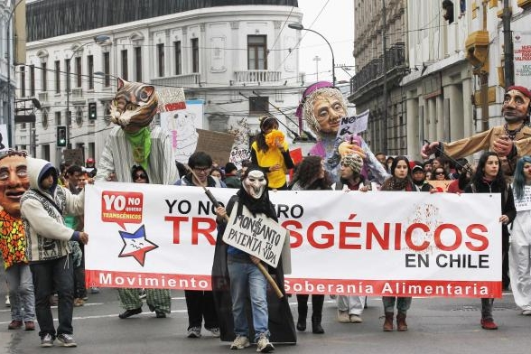 march-against-monsanto-valparaiso-chile-1a
