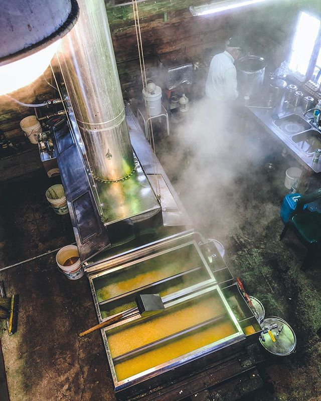There it is! That's the good stuff. My dad in the background filtering and maple syrup boiling away in the evaporator in our little sugarhouse at the family farm last week in Vermont 🍁 If you're in nyc DM me to buy some! @tetherloopfarm