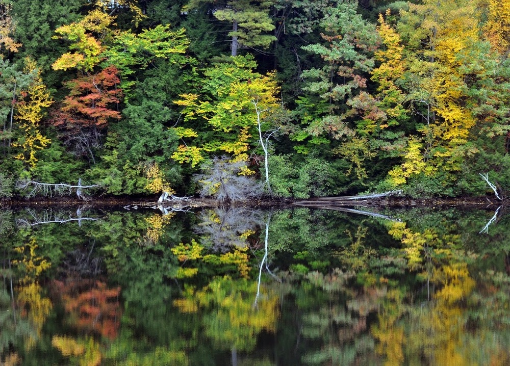 Changing colors on the bank of the Hudson River near Corinth. Dave Kraus /  krausgrafik.smugmug.com