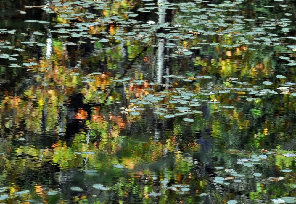 Beginnings of fall color reflected in Eagle Lake just off Rt. 74 east of Paradox Lake. Dave Kraus /  krausgrafik.smugmug.com