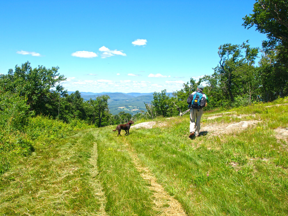 Joanne Hihn and Bookah Heading down Belleayre Mountain.   Alan Via