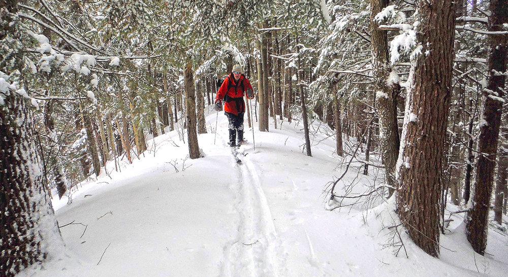 2017-02-xc-skiing-snowshoeing-01.jpg
