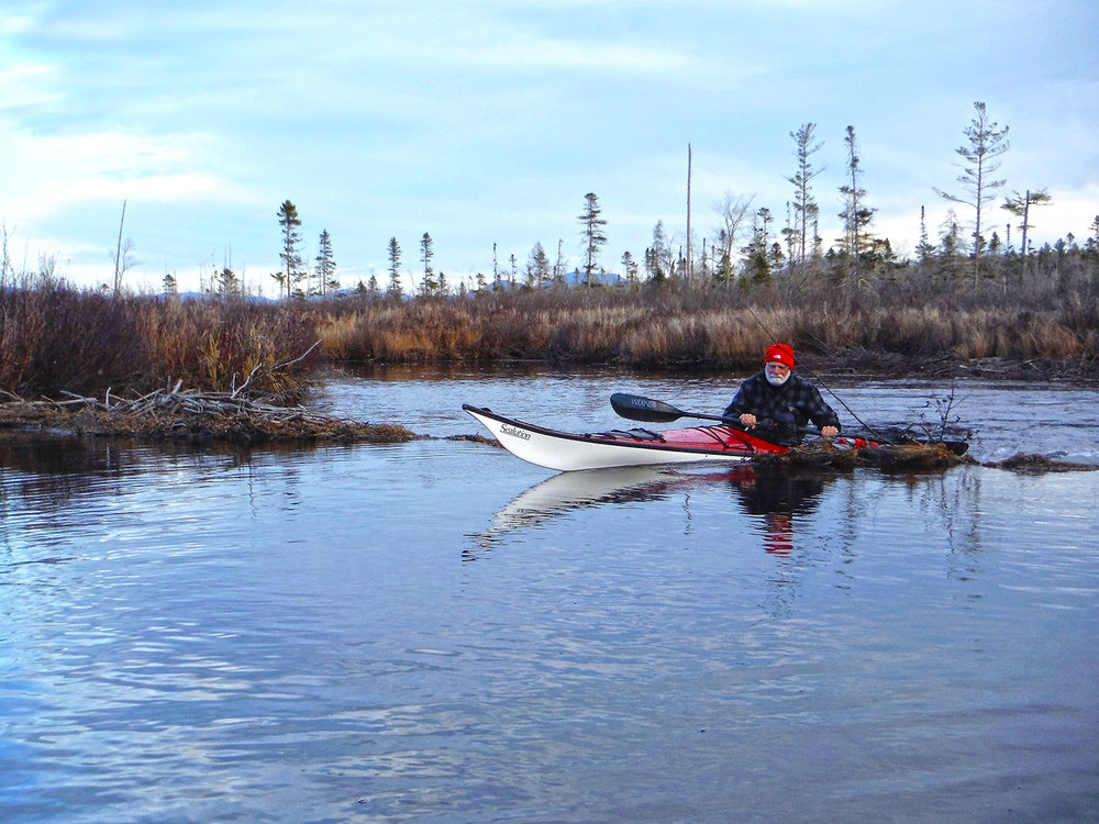 Paddle hard and you might be able to get up and over this beaver dam on Brandreth Lake Outlet. Rich Macha