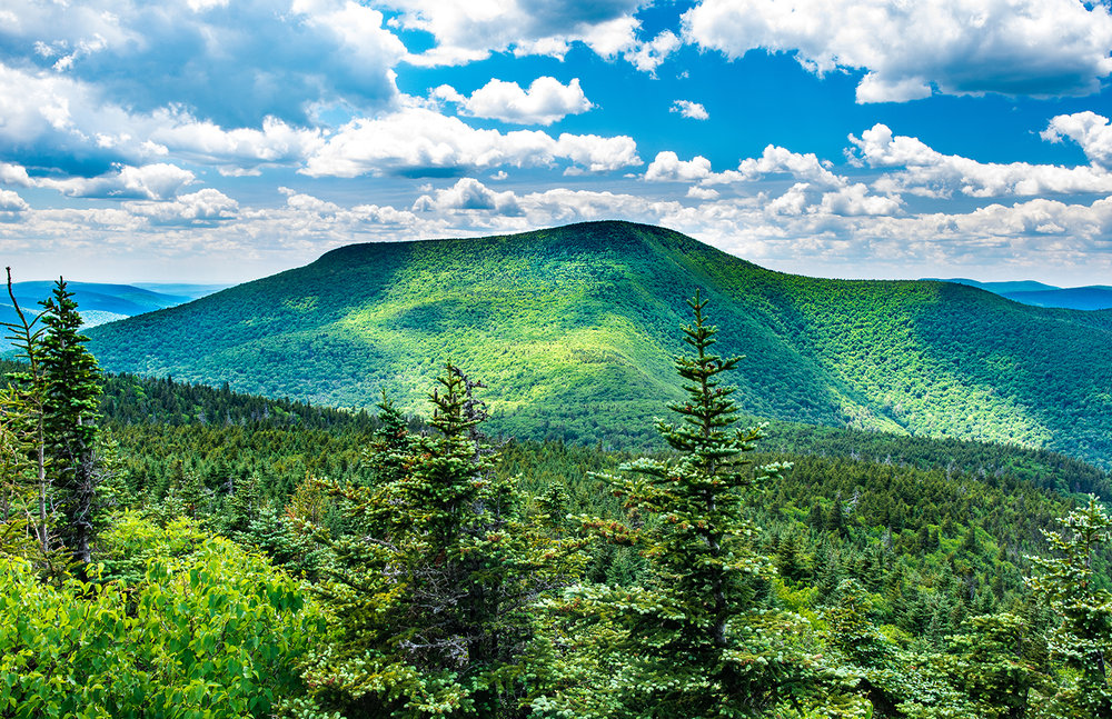 Slide Mountain, highest peak in the Catskills, and Long Path high point.  Steve Aaron Photography