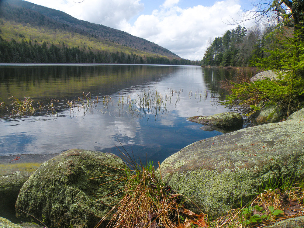 Serene view on the edge of Puffer Pond.   Bill Ingersoll