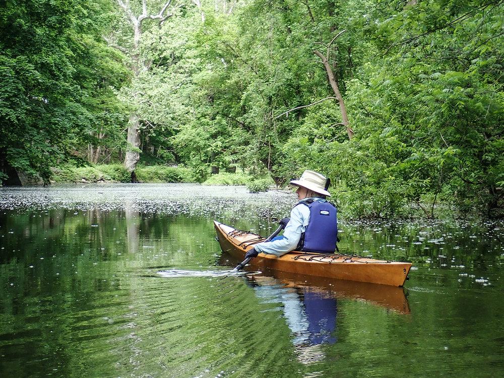 Char Mapes explores the Hannacroix Creek near Coeymans Landing.   Alan Mapes
