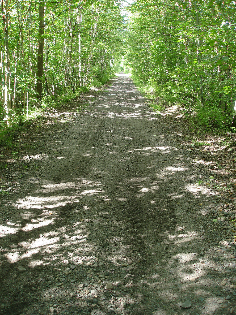 Rail trail near Chazy Lake, Far North section.   Erik Schlimmer