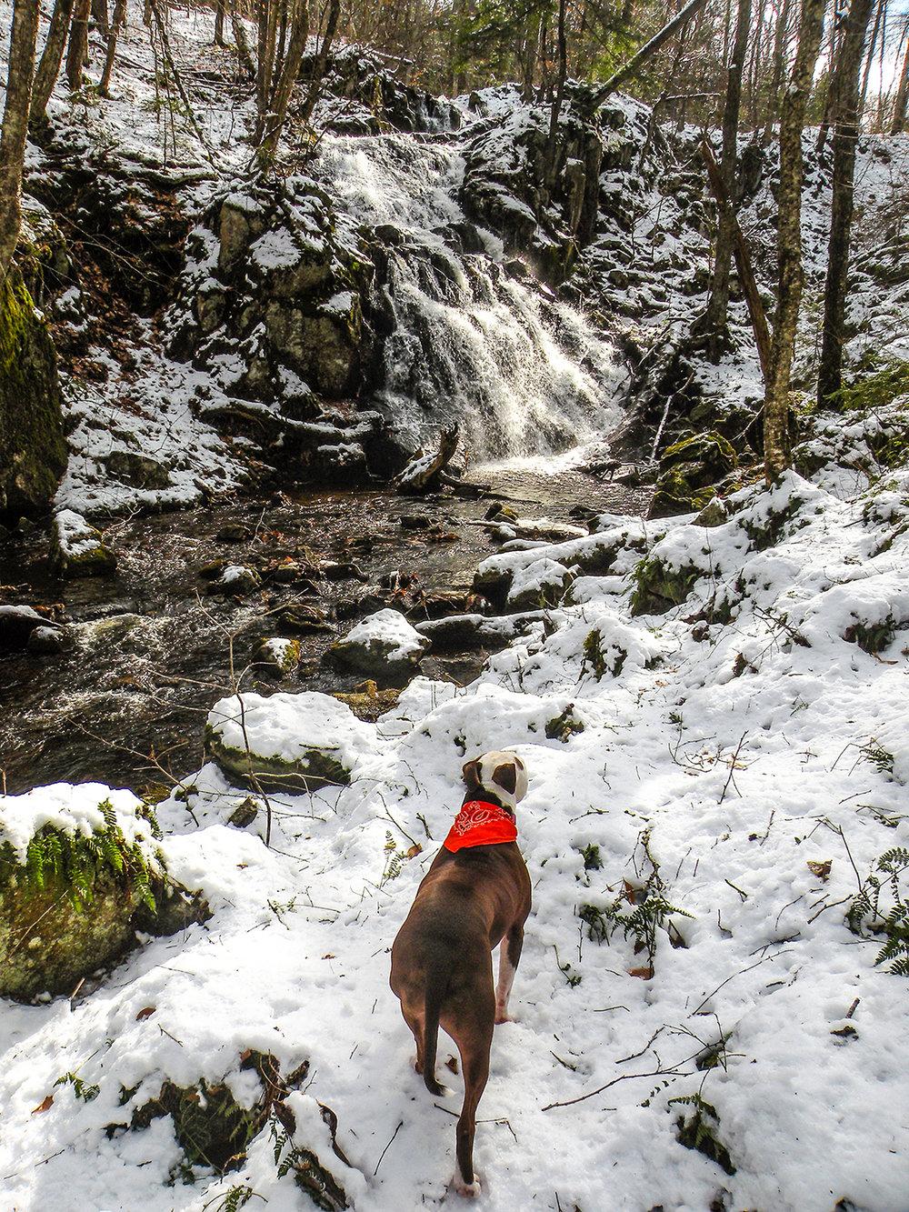 Vly Creek Falls is a 30-foot, distinctive waterfall.   Bill Ingersoll