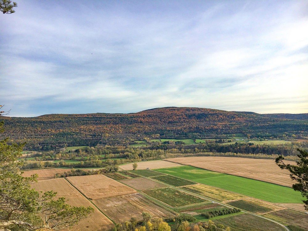 """Schoharie Valley to Armlin Hill State Forest from the actual """"nose.""""  Tom O'Grady"""