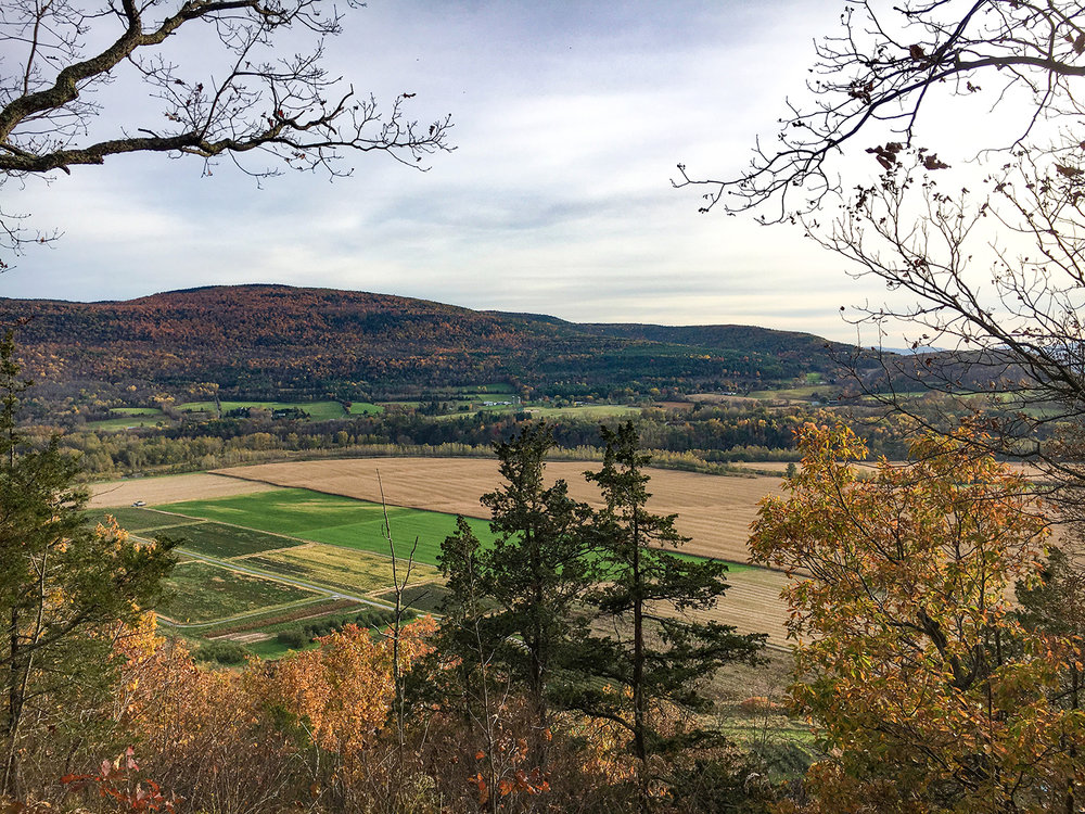 View on the descent along the steeper yellow trail.  Tom O'Grady