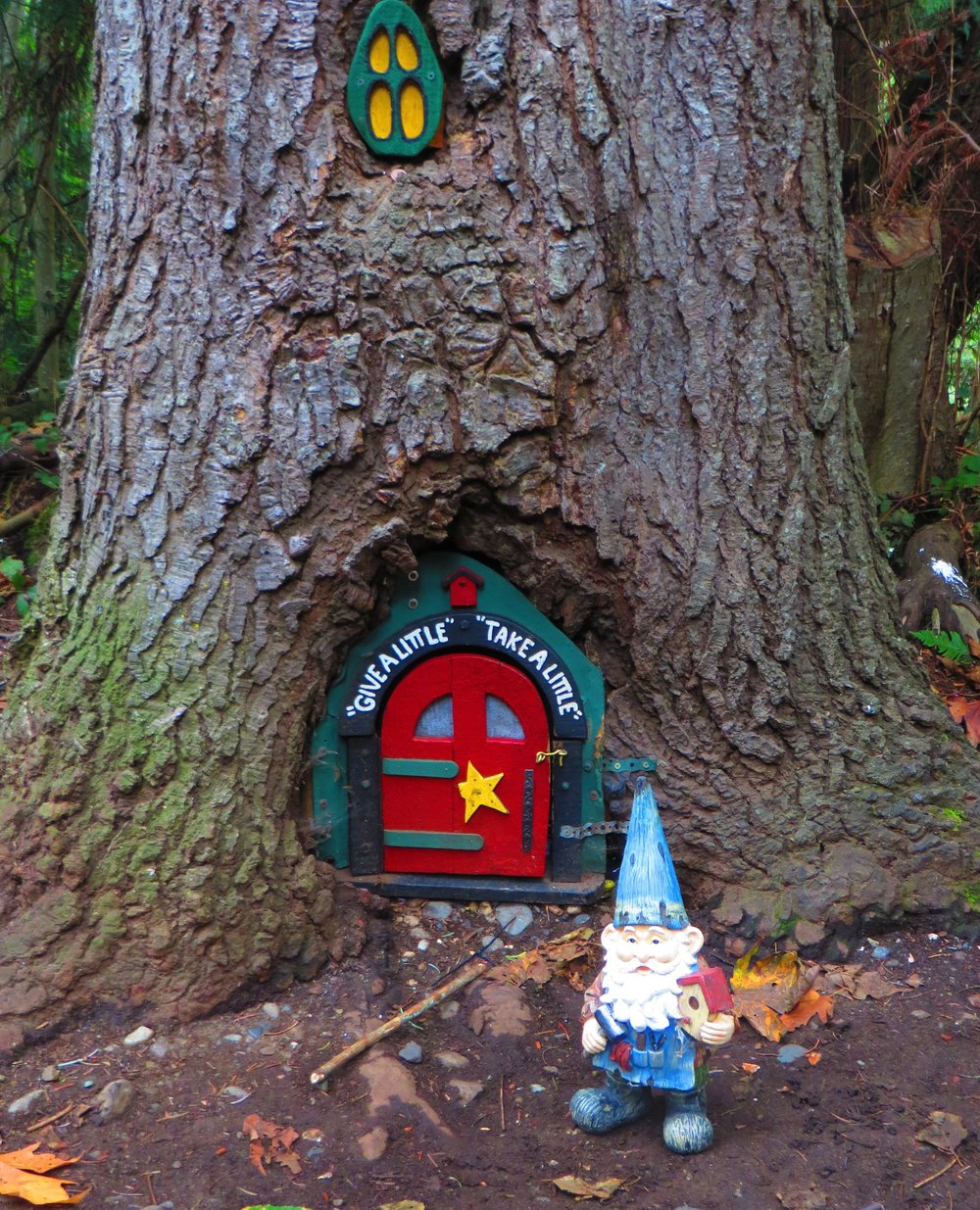 Gnome caught on camera at Neck Point Park.