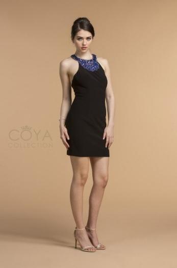 Coya CS1722
