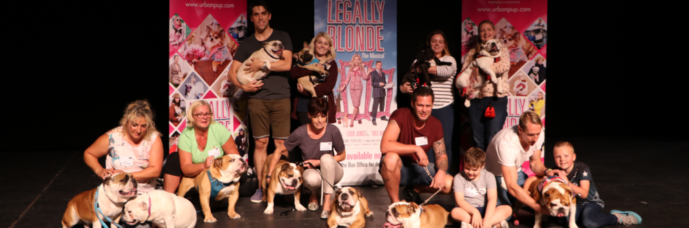 Legally Blonde Musical Dog Auditions Come To Surrey