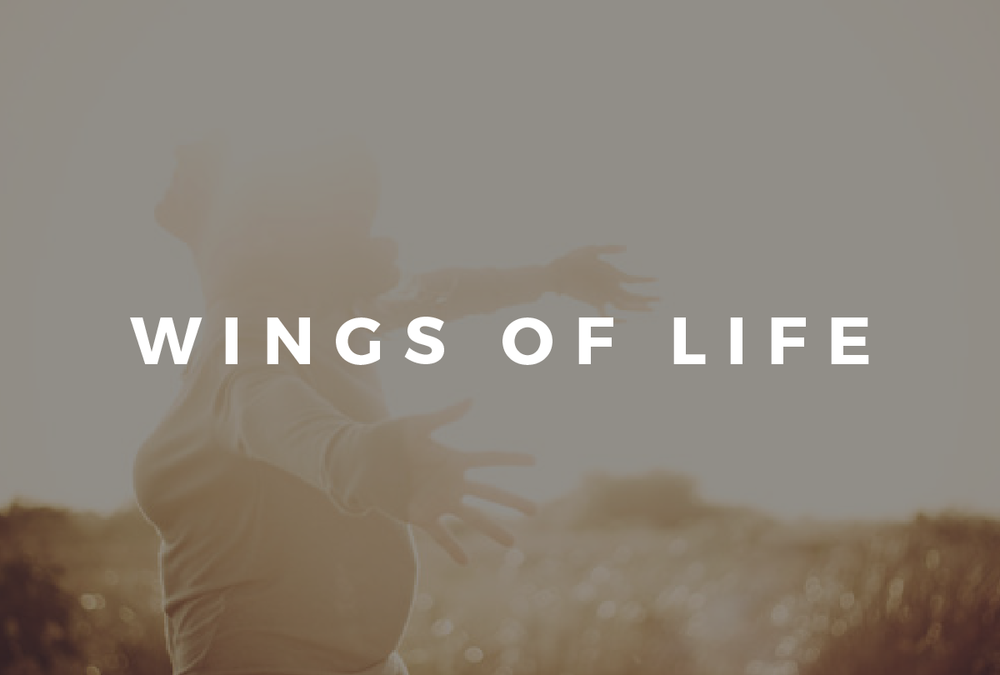 Wings of Life.png