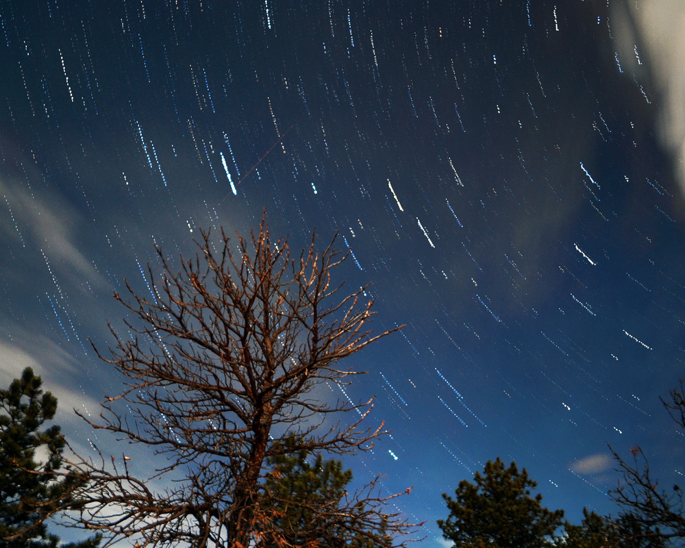 Star trails in the night sky above Horsetooth Reservoir in Fort Collins, Colo. The composite image is composed of roughly forty photos with a thirty-second exposure over a four-hour period. Published in 2014's Spiritus Mundi, CSU's Honors literary magazine.